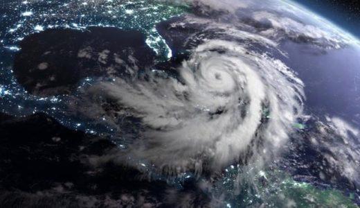 台風の通過はバクテリアと植物プランクトンの生産を促進