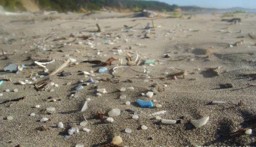 「うみの環境しらべ隊」でマイクロプラスチックセミナー