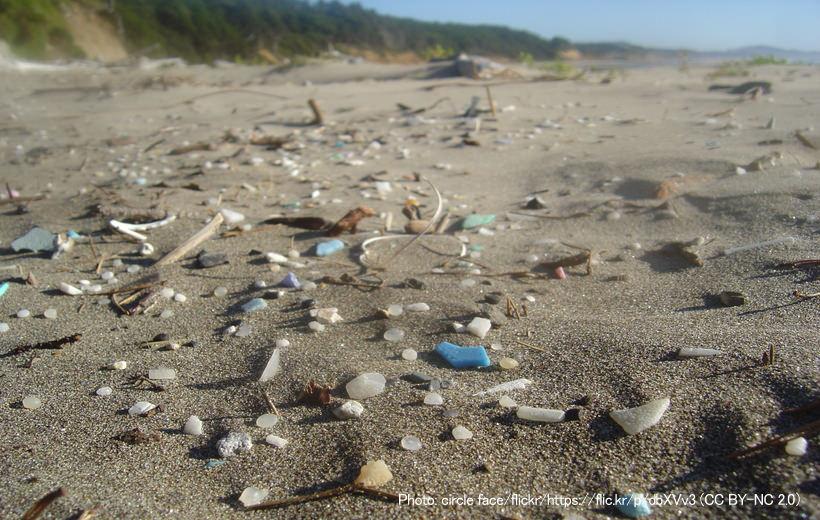 浜辺のマイクロプラスチック