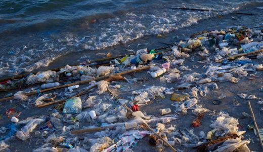 海洋プラスチック問題 -パタゴニア鎌倉店でスタッフ勉強会を開催