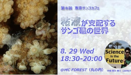 第8回東京サンゴカフェ 「粘液が支配するサンゴ礁の世界」