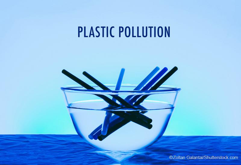 海プラスチック