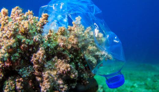 朝日新聞「TOKYO語り場」に取材協力:脱プラスチック考えて